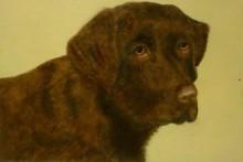 Els Bouwman, mijn hond, 20 x 30