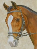 Lot Janssen, ons paard, 40 x 30