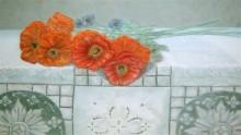 Debora Brouwer, klaprozen, 40 x 60,  naar de waarneming