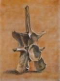 Marleen Rombouts, naar de waarneming, 40 x 30