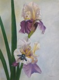 Trude Hendriks, mijn boeketje, 40 x 30
