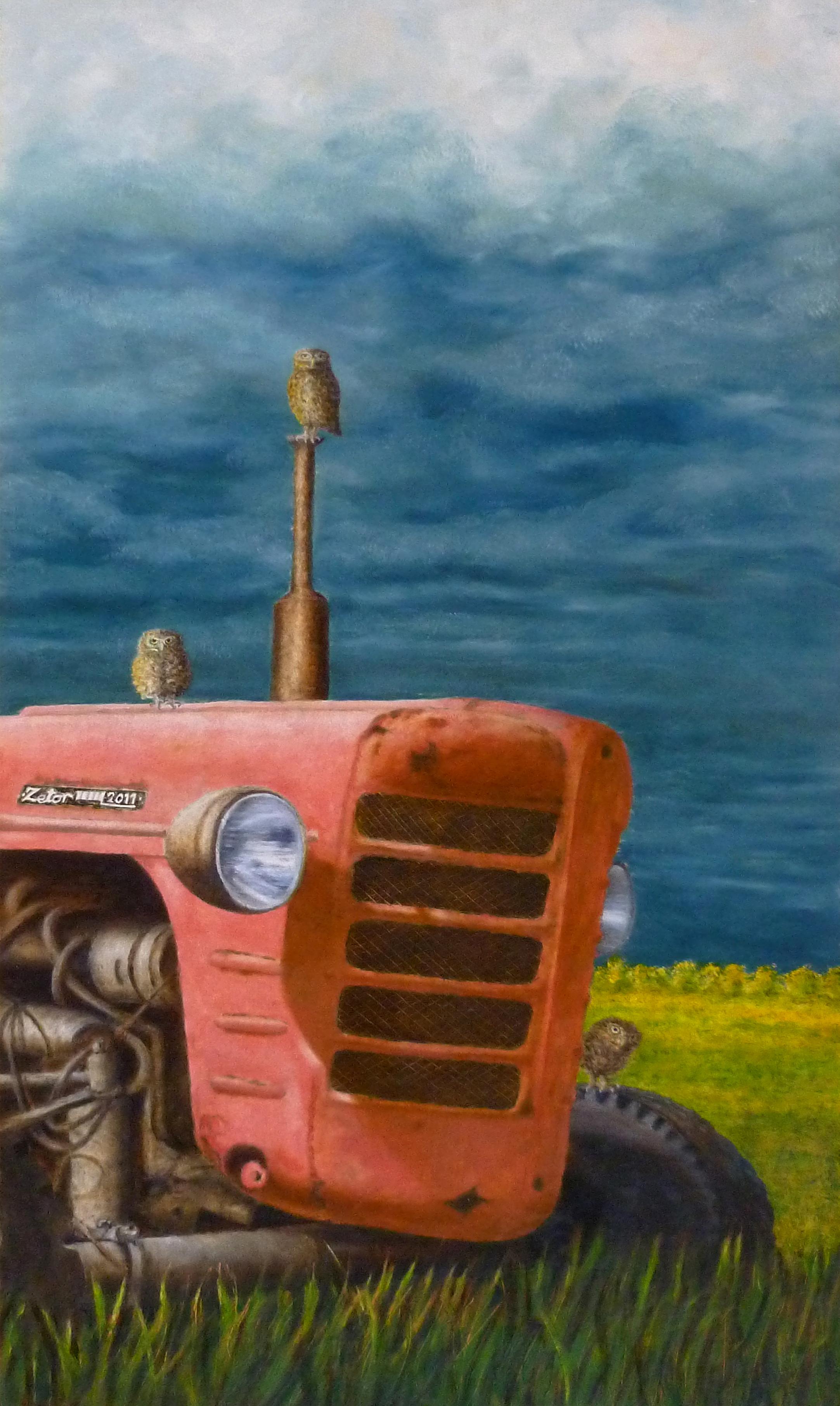 Len Samsom, steenuiltjes op tractor, 60 x 40