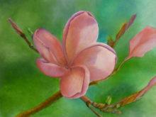 Erik van Grinsven, bloem, 7e opdracht, 30 x 40