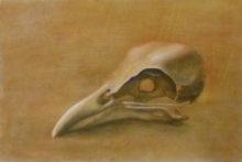 Lianne Evers, 1e opdracht, naar de waarneming, 20 x 30