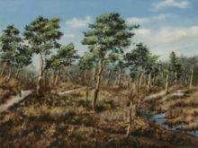Tineke van Taarling, Vennen, 30 x 40, 6e opdracht