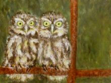 Willemijn van Oort, nieuwsgierige aagjes, 30 x 40, 5e opdracht