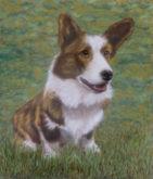 Henri Nijland, onze hond, 35 x 30, 5e opdracht