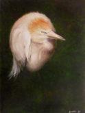 Lenneke Mulder, puntig roze, 40 x 30, 5e opdracht